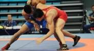 (第十三届全运会赛况)宁夏选手武伟摘得国际式摔跤男子自由式74公斤级铜牌