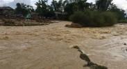 越南暴雨和洪灾已导致37人死亡40人失踪