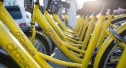 银川人一年骑小黄车可绕地球近1200圈