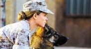 五月进口佳片陆续来袭 《战犬瑞克斯》适合爱犬人士