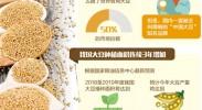 今年产量有望创新高 国产大豆要发挥食用消费优势