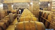 """葡萄酒产业:塞上江南的""""紫色名片"""""""