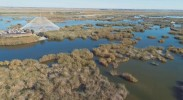 坚持科学治污 还沙湖一汪清水一片绿洲 石泰峰现场督办沙湖星海湖水质治理 重点处理建议办理情况