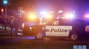 详讯:至少13人在加州酒吧枪击事件中死亡