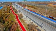 亲水大街(花博园路段)建设彩色沥青非机动车道