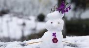 冬季养生:藏肾护阳平安过冬