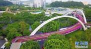 """生活慢下来、村民富起来:广州3500多公里绿道打造城市""""幸福路"""""""
