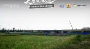 中卫南站黄河大桥(六)