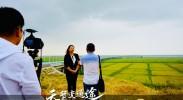 银川兵沟黄河大桥(四)