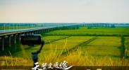 银川兵沟黄河大桥(七)