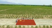 银川:红旗飘飘迎国庆