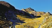 贺兰山生态修复区重现植被
