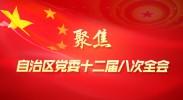 聚焦自治区党委十二届八次全会