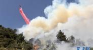 """【纵论天下】山火频频肆虐 美国加州:""""为啥受伤的总是我"""""""