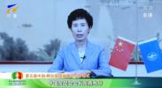 中国贸促会会长高燕视频致辞