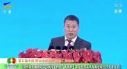 中国—阿拉伯国家改革发展研究中心理事长秘书长、执行主任王广大发布《中阿经贸关系发展进程2020年度报告》