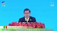 """全球CEO发展大会联合主席龙永图发表主题演讲《""""一带一路""""和""""双循环""""背景下的新机遇》"""