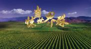 首届中国(宁夏)国际葡萄酒文化旅游博览会宣传片