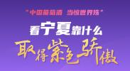 图说|看宁夏靠什么取得紫色骄傲!