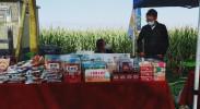 建设美丽乡村 宁夏持续推进农业农村污染防治攻坚战