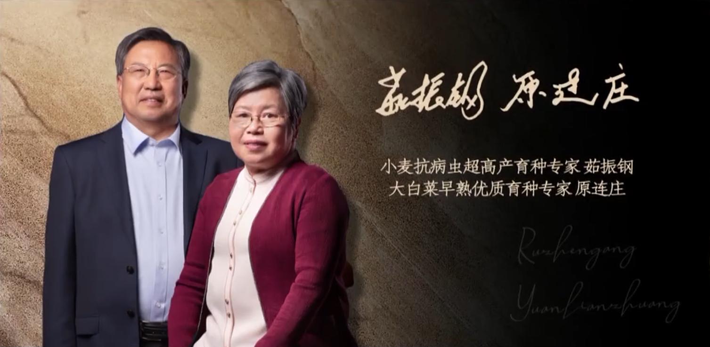 """【视频】""""麦爸菜妈""""茹振刚 原连庄朗读《许茂和他的女儿们》"""