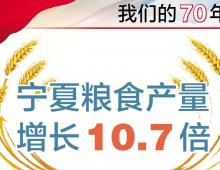 图解|数看70年,宁夏粮食产量增长10.7倍