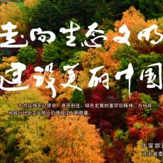 塞罕坝精神 宣传公益广告9