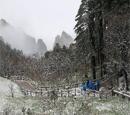 白雪冰挂云海景观齐现黄山