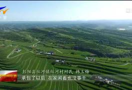 塞上江南今胜昔 | 彭阳:既要绿水青山又要金山银山