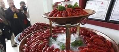 意大利严控小龙虾等非法入侵物种 违者将被重罚
