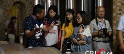 【塞上江南+神奇宁夏】红寺堡葡萄酒 移民在酒香中脱贫致富