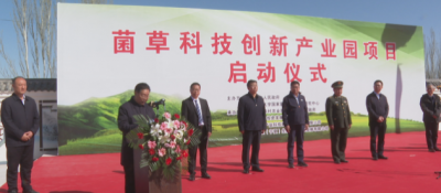 石嘴山(shan)市(shi)菌草科技ji)蔥xin)產業園項(xiang)目啟動建設