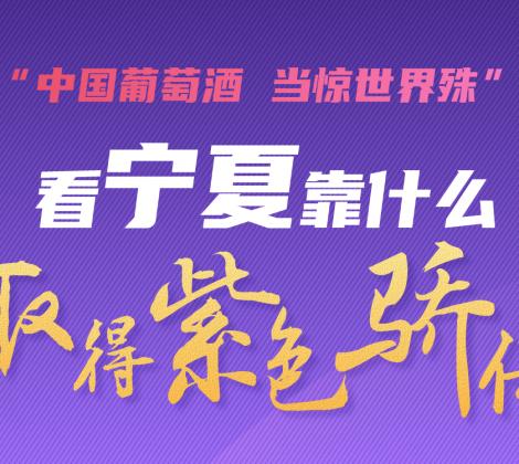 图说 看宁夏靠什么取得紫色骄傲!
