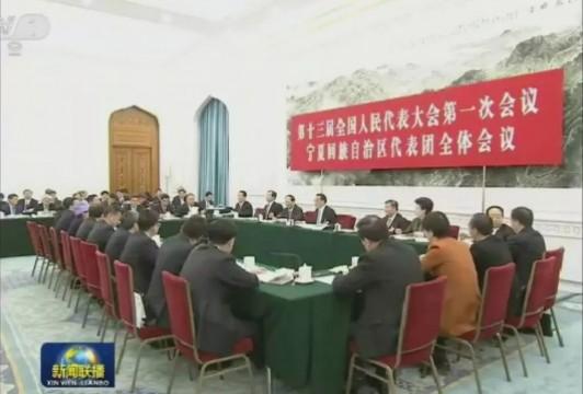 视频、多图| 李克强参加十三届全国人大一次会议宁夏代表团审议
