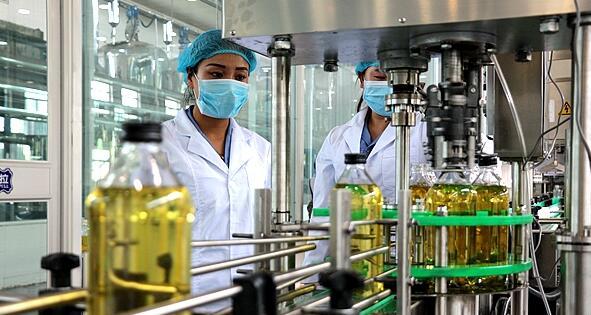 宁夏首家葡萄籽油生产线正式投产