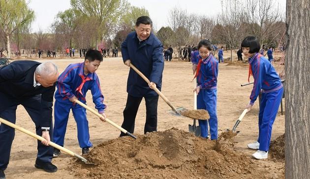 习近平在参加首都义务植树活动时强调:发扬中华民族爱树植树护树好传统 推动国土绿化不断取得实实在在的成效