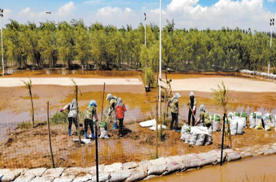 黃河2號洪峰過境 中衛多地受影響