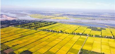 吴忠:奏响农业高质量发展新乐章