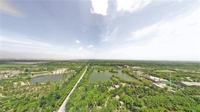 绿色回响  塞上产业起新潮——重温习近平总书记宁夏之行系列报道之四