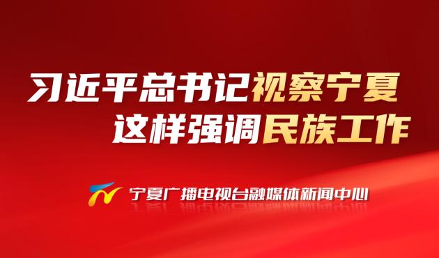 重温|习近平总书记视察宁夏 这样强调民族工作