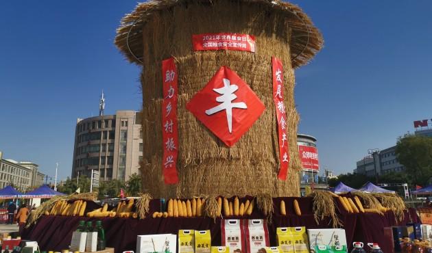 宁夏启动2021年世界粮食日和全区粮食安全宣传周活动