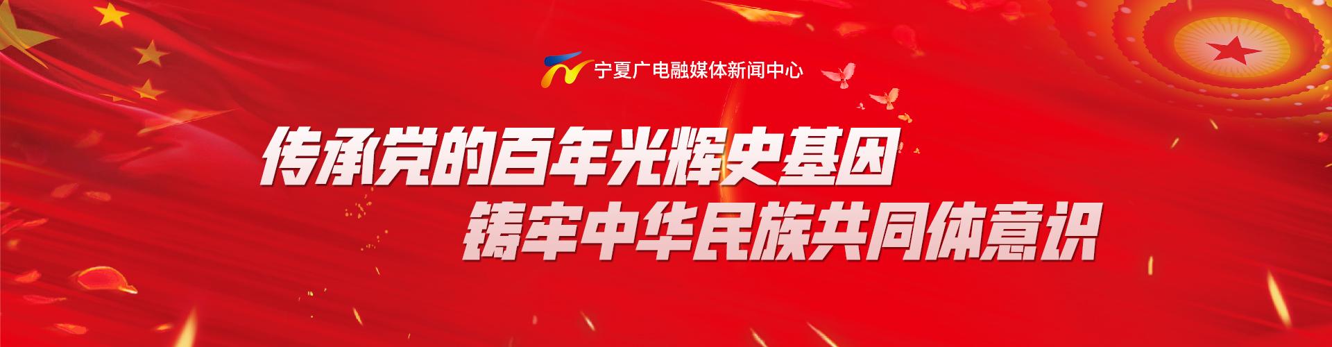 传承党的百年光辉史基因 铸牢中华民族共同体意识