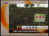 宁夏经济报道-2017年8月23日