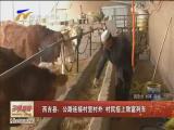 西吉县:公路连接村里村外 村民搭上致富列车-2017年12月14日