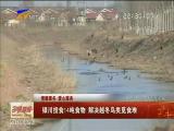 (情暖寒冬 爱心服务)银川投食14吨食物 解决越冬鸟类觅食难-2018年1月19日