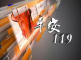 平安119-2018年1月28日