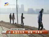 """湿地引鸟来 湖城""""水肌肤""""-2018年2月19日"""