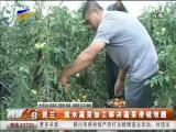 贺兰:脱水蔬菜加工解决蔬菜滞销难题-2018年3月17日