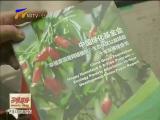 北京宁夏联手开展互联网生态扶贫-2018年3月22日