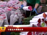 (相约北京)宁夏花卉香飘世界-2018年3月17日